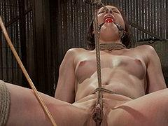 Cheyenne Jewel Is Bound In Rope Ass Spanked And Pussy Vibrat...