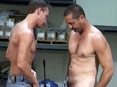 Muscled Gay Paul Carrigan And His Co Worker Rubbing Dicks An...